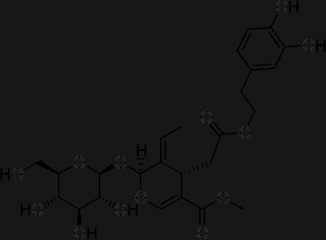 Oleuropein Molecules