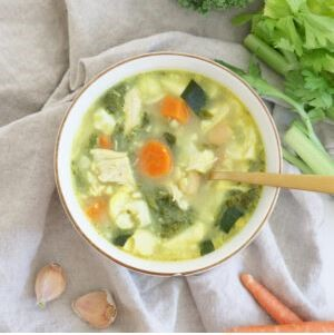 Gut Healthy Soup